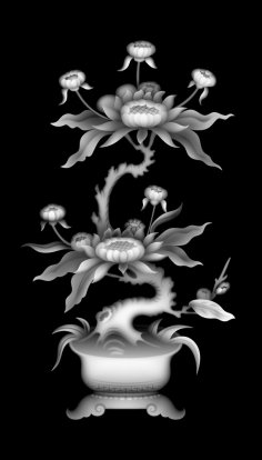 3D Grayscale Image 135 BMP File