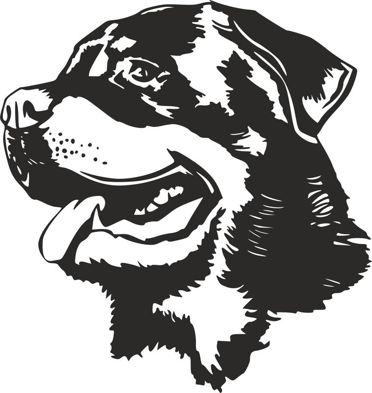 Rottweiler Dog Head Black White Vector dxf File