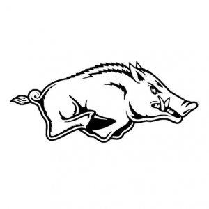 Arkansas Razorback dxf